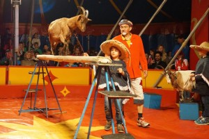 Zirkus1b-120 klein