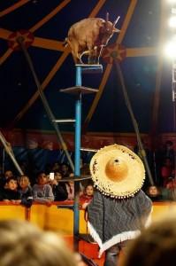 Zirkus1b-121 klein